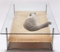 Столик для вас и для кота